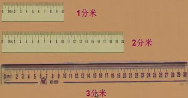 学下册第5课 分米和毫米 认识分米 毫米